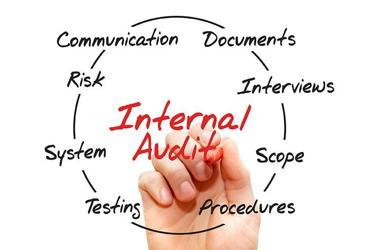 Internal control reviews, internal audit cycle of factors