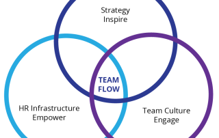 Team Fusion Team Flow diagram