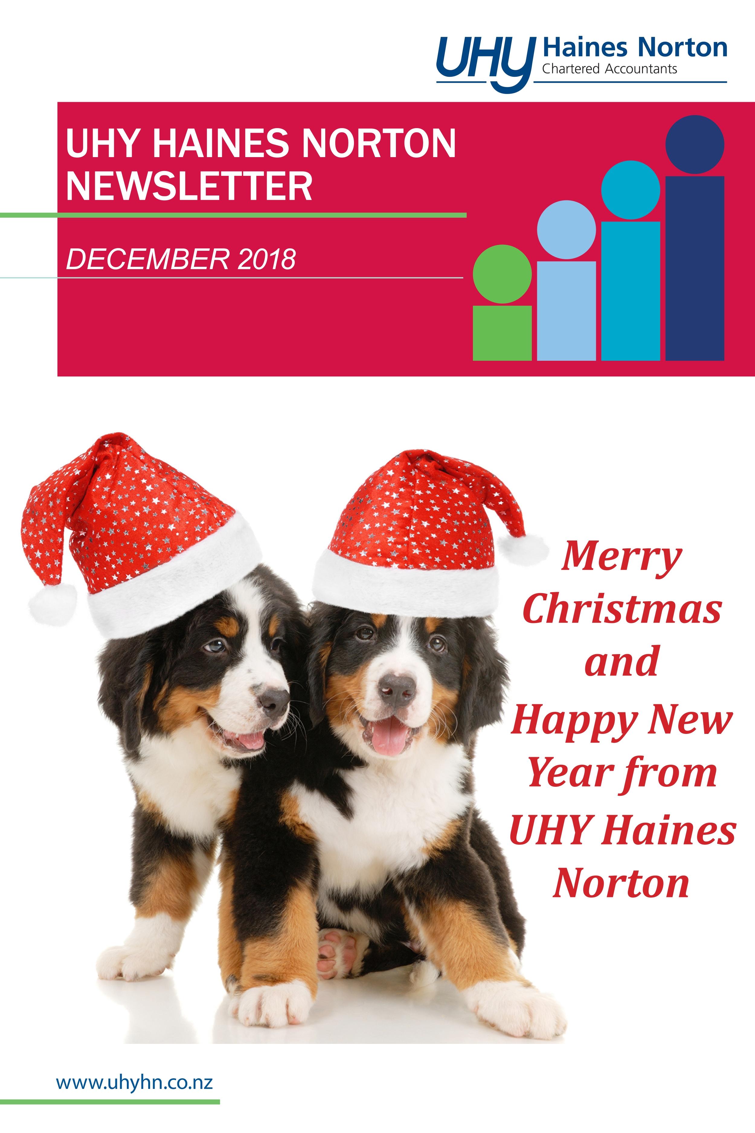 UHY Haines Norton Newsletter December 2018